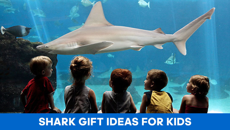 shark-gifts-kids