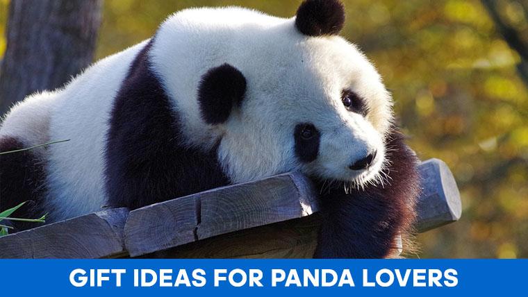 panda-lover-gifts